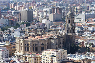 Photograph - Malaga Cathedral by Rod Jones