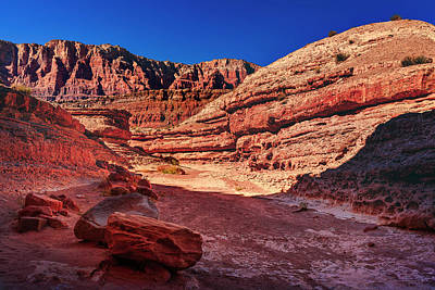 Photograph - Marble Canyon by Peter Lakomy