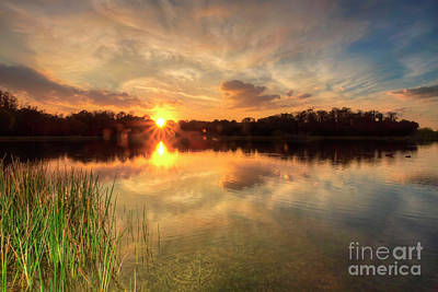 Photograph - Marsh Sunset by Rick Mann
