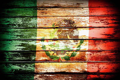 Mexican Flag Art Print by Les Cunliffe