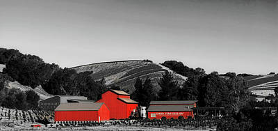 Photograph - Midnight Winery - California by L O C
