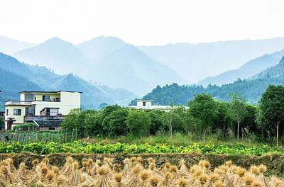 Photograph - Mountains And Rural Scenery by Carl Ning
