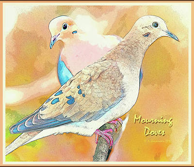 Mourning Dove Pair  Art Print by A Gurmankin