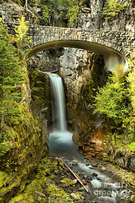 Photograph - Mt. Rainier Christine Falls by Adam Jewell