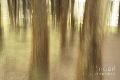 Nature Abstract Art Print by Gaspar Avila