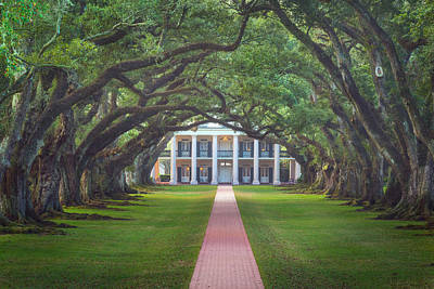 Photograph - Oak Alley Plantation by Chris Moore