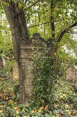 Jewish Heritage Photograph - Old Jewish Cemetery by Michal Boubin