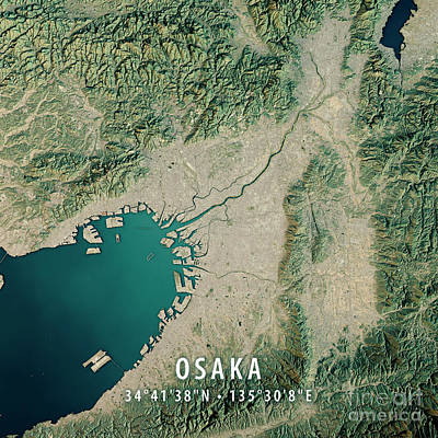 Osaka 3d Render Satellite View Topographic Map Art Print by Frank Ramspott