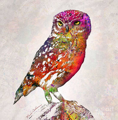 Colored Owl Painting - Owl  by Mark Ashkenazi