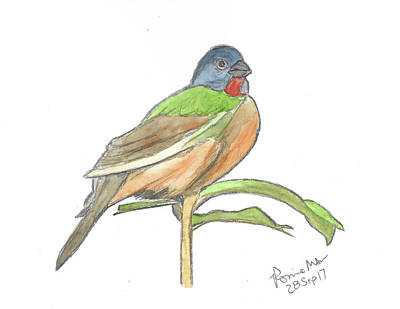 Bunting Mixed Media - Painted Bunting by Ronnie Maum