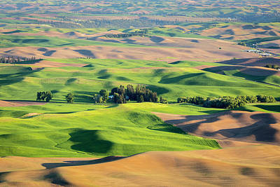 Photograph - Palouse by Evgeny Vasenev