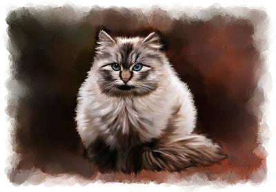 Pet Portraits Mixed Media - Pet Cat Portrait by Michael Greenaway