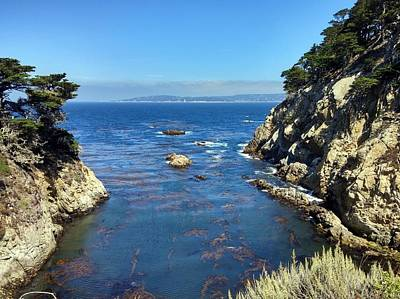Photograph - Point Lobos Coastal Cliffs by Richard Yates