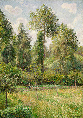 Poplars, Eragny Art Print by Camille Pissarro