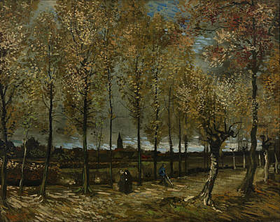 Photograph - Poplars Near Nuenen by Vincent van Gogh