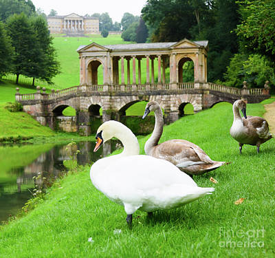 Photograph - Prior Park, Bath by Colin Rayner