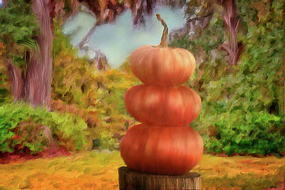 Mixed Media - 3 Pumpkins Lined Up by Mary Timman
