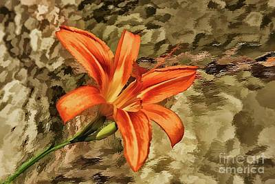 Day Lilly Photograph - Reaching Out by Arnie Goldstein