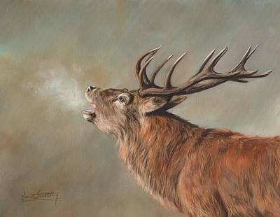 Painting - Red Deer Stag by David Stribbling