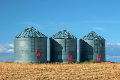 Agriculture Photograph - 3 Red Doors by Todd Klassy