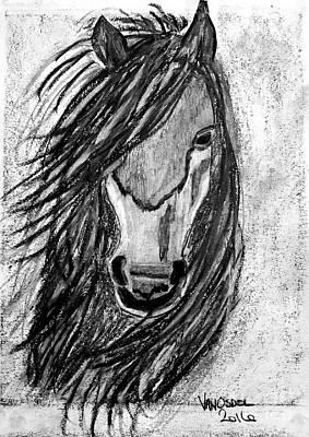 Colorado Rockies Drawing - Romeo The Wild Stallion by Scott D Van Osdol