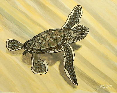 Green Sea Turtle Painting - Sea Turtle Baby by W Gilroy