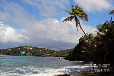 Photograph - Secluded Beach by Gary Wonning