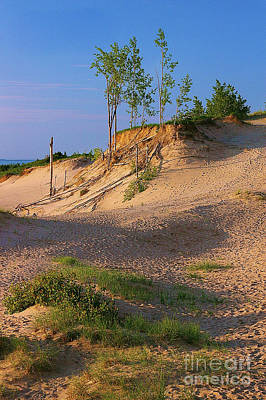 Photograph - Sleeping Bear Dunes by Randy Pollard