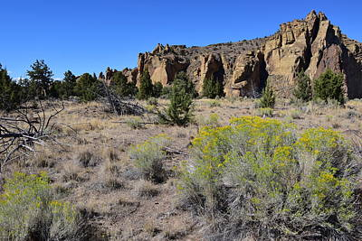 Photograph - Smith Rock by Bonnie Bruno