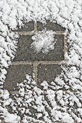 Photograph - Snow On A Wall  by Tom Gowanlock