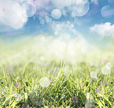Blurred Background Photograph - Spring Background by Les Cunliffe