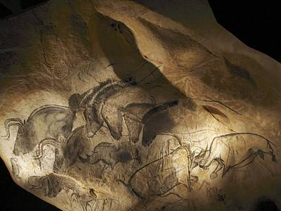 Bison Photograph - Stone-age Cave Paintings, Chauvet, France by Javier Truebamsf