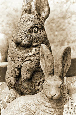 Photograph - Stone Chocolate Bunnies by JAMART Photography