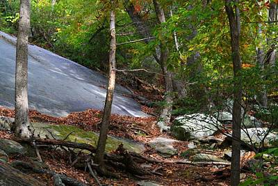 Photograph - Stone Mountain Face by Kathryn Meyer
