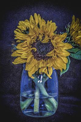 Sunflower Art Print by Angela Aird