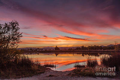 Photograph - Sunrise Reflections by Robert Bales