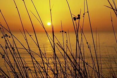 Photograph - Sunset by Carlos Caetano