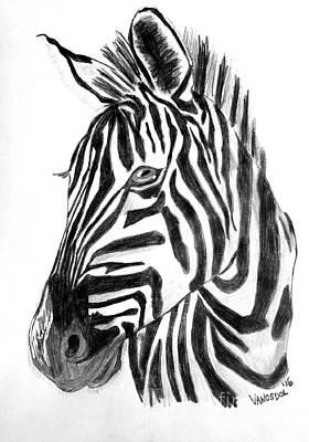 Sunset Zebra Original