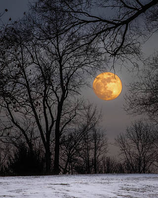 Photograph - Super Blue Moon Rising by William Christiansen