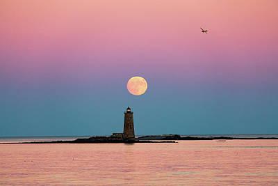 Photograph - Super Moon 2016 by Robert Clifford