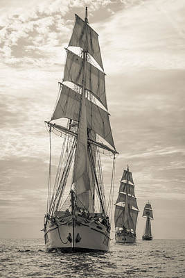 Photograph - Tallships On Parade by Cliff Wassmann