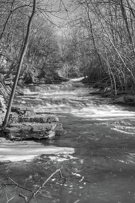Infrared Photograph - Tanyard Creek Park by Michael Munster