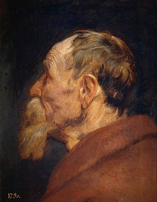 Aged Painting - The Head Of An Old Man by Anthony van Dyck