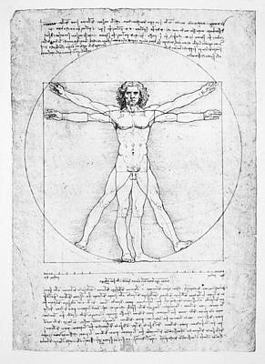 Proportionality Wall Art - Drawing - The Proportions Of The Human Figure by Leonardo Da Vinci