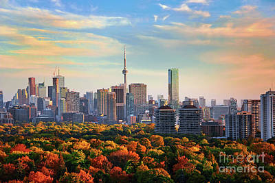 Photograph - Toronto Autumn by Charline Xia