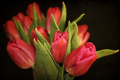 Double Layer Photograph - Tulips by Cathie Tyler