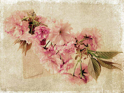 Antique Flowers Vase Wall Art - Photograph - Vintage Blossom by Jessica Jenney