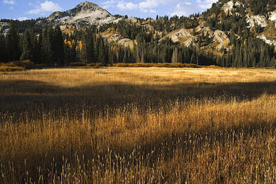 Photograph - Wasatch Mountains In Autumn by Douglas Pulsipher