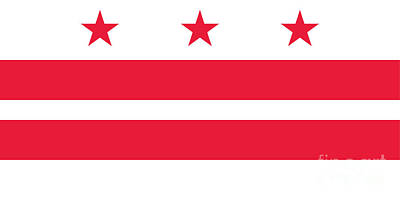 Washington D.c Mixed Media - Washington, D.c. Flag by Frederick Holiday