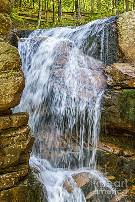 Photograph - Waterfall by Patricia Hofmeester